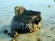 Restos de naufrágios nos recifes