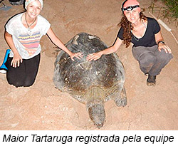 Maior Tartaruga registrada pela equipe.